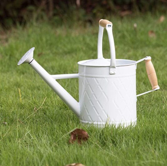 HORTICAN Galvanized Watering Can