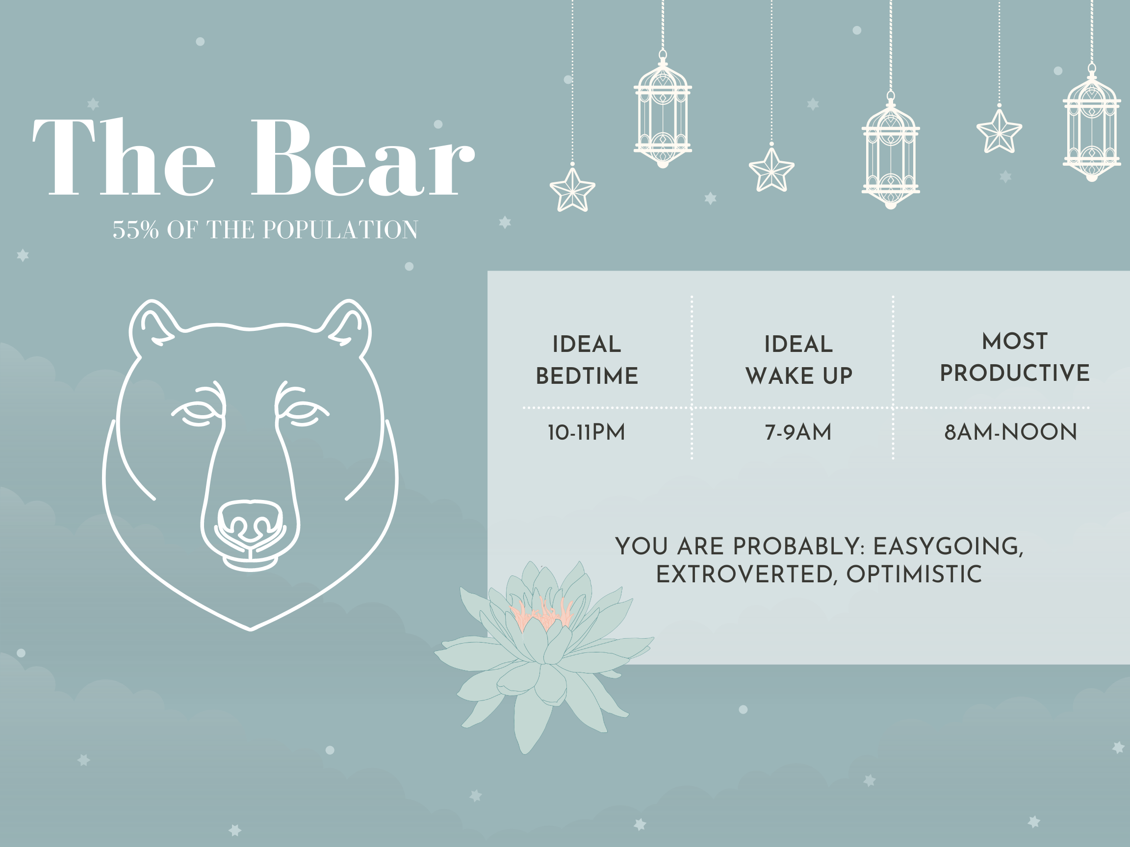 bear chronotype