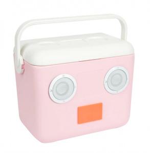 Sunnylife Cooler Box w/ Built in Speaker