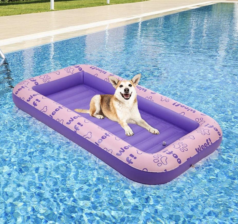 dog pool floatie